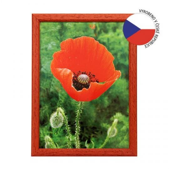 Hama rámeček dřevěný TRAVELLER II červený 21x29,7 cm