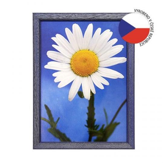 Hama rámeček dřevěný TRAVELLER II modrý 21x29,7 cm